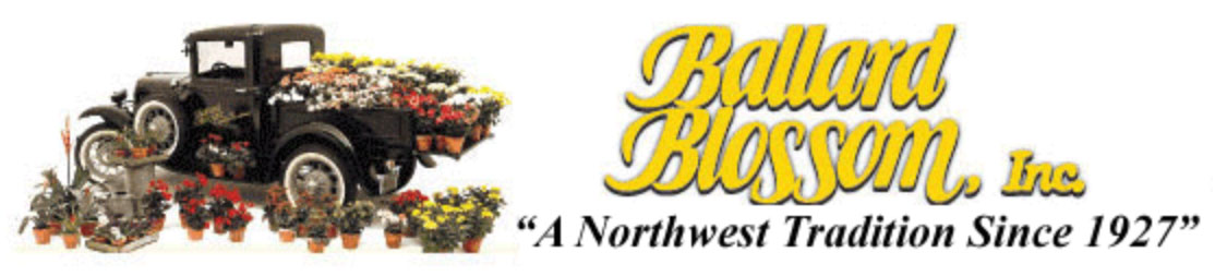 Ballard Blossoms Logo